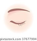 Women's eyes 37677994