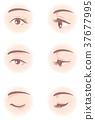Women's eyes 37677995