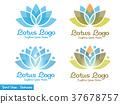 elegant Lotus flower logo 37678757