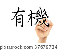 traditional Chinese words for Organic 37679734