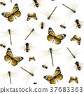 seamless insects background set 37683363