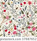 adorable, colorful, flora 37687652