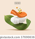 Salmon Sushi elements 37690636