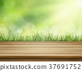 close-up look at natural grass background 37691752