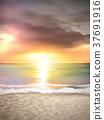sunset scenery on the beach 37691916