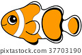 fish, fishes, character 37703190
