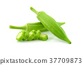 Fresh young okra isolated on white background 37709873