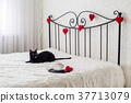 Romantic decoration 37713079
