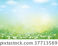 Vector summer,  green,  nature  background. 37713569