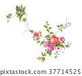 ดอกไม้,ใบไม้,สีน้ำ 37714525