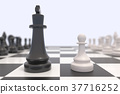 Two chess pieces on a chessboard 37716252