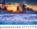 beautiful winter sunset 37717778