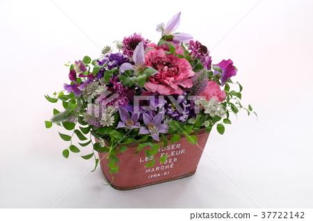 생화 꽃 37722142