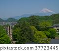 富士山 反射爐 尼亞瑪島 37723445