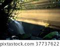 meotodaki falls, water fall, waterfall 37737622