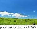 ท้องฟ้าเป็นสีฟ้า,โลก ดิน,ธรรมชาติ 37740527