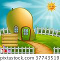 mango house in garden 37743519