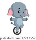 cute Elephant riding a unicycle 37743552