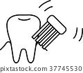 牙刷 矢量 牙膏 37745530