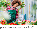 Beautiful young woman watering various potted 37746718
