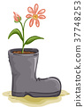 Flower Boots Illustration 37748253
