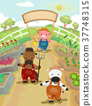 动物 花园 插图 37748315