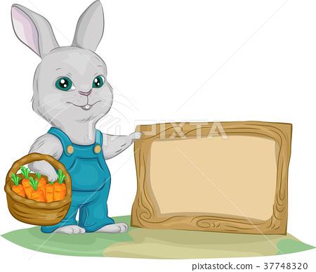 Bunny Garden Board Illustration 37748320