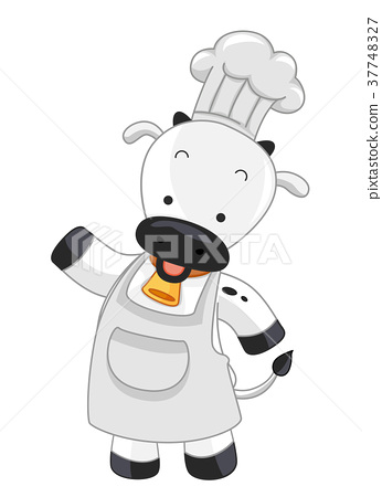 Cow Chef Present Illustration 37748327