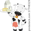Cow Dairy Products Platter Illustration 37748329