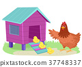 Hen Chicks Chicken Coop Illustration 37748337