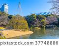 코이시카와코라쿠엔, 고이시카와코라쿠엔, 일본 정원 37748886