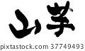 calligraphy writing, japanese yam, characters 37749493