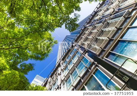 오피스 거리의 고층 빌딩과 녹색 37751955
