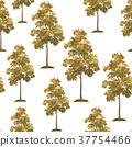 Acacia Trees Seamless 37754466