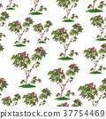 Castor Plant Seamless 37754469