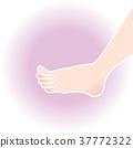 脚 英尺 爪子 37772322