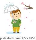 꽃놀이 비가 슬퍼 남성 37773851