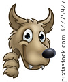 Wolf Cartoon Character Mascot Peeking Around Sign 37775927