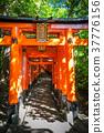 Fushimi Inari Taisha torii, Kyoto, Japan 37776156