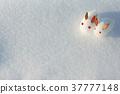 A snow rabbit 37777148