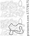 Dolphin maze 37778575