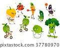 vegetable, sport, vector 37780970