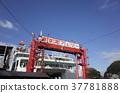 東京 船 划船 37781888