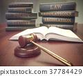 Human Rights Hammer Book 37784429