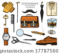 vector, accessories, set 37787560