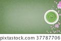 japanese tea, powdered green tea, cherry blossom 37787706