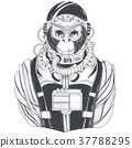 hand drawn illustration of a monkey astronaut 37788295
