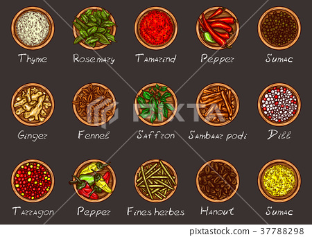 illustration of a variety of spices and herbs in 37788298