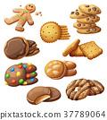 vector, cookie, set 37789064