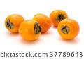 persimmon, kaki, orange 37789643